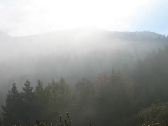 11 brouillard montagne 580 x 435 studio jaldhara for 11 435