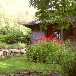 06 studio extr jardin 580 x 435
